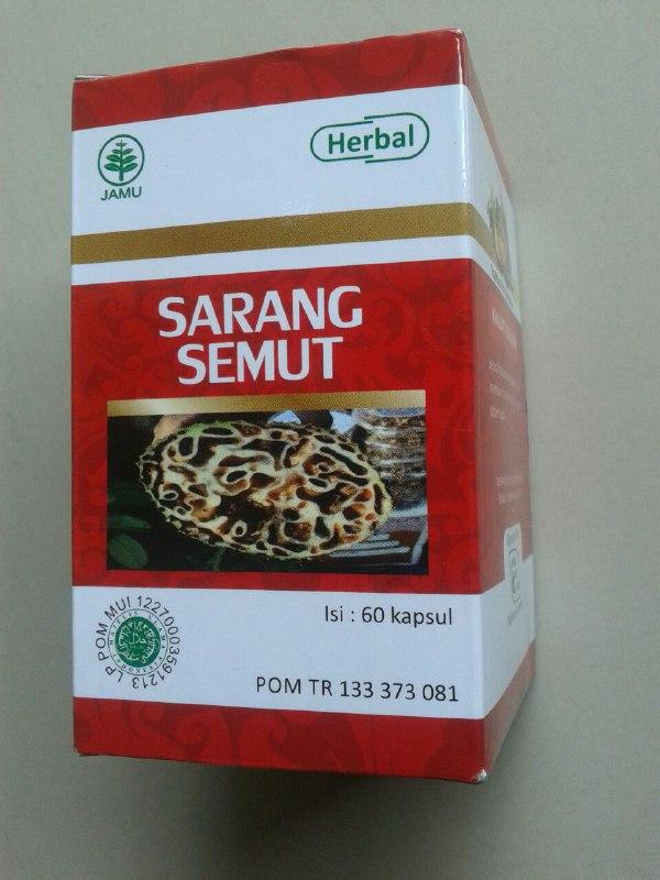 Herbal Kapsul Sarang Semut cover 2