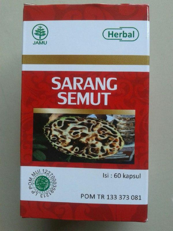 Herbal Kapsul Sarang Semut cover