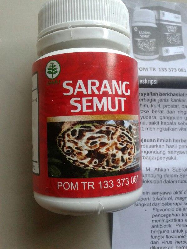 Herbal Kapsul Sarang Semut isi
