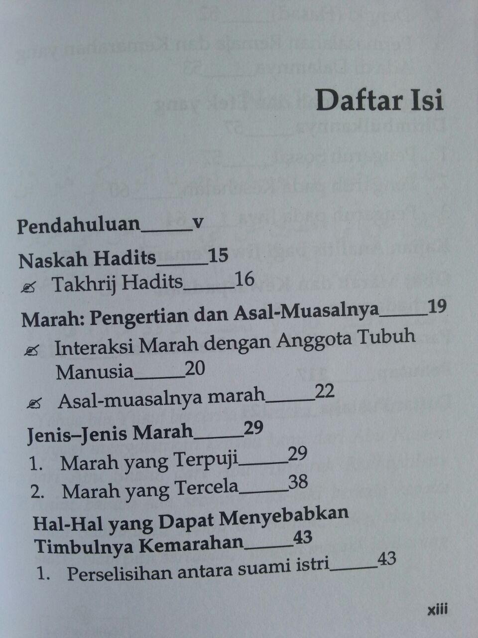 Buku La Taghdhab Metode Nabi Dalam Mengobati Marah isi