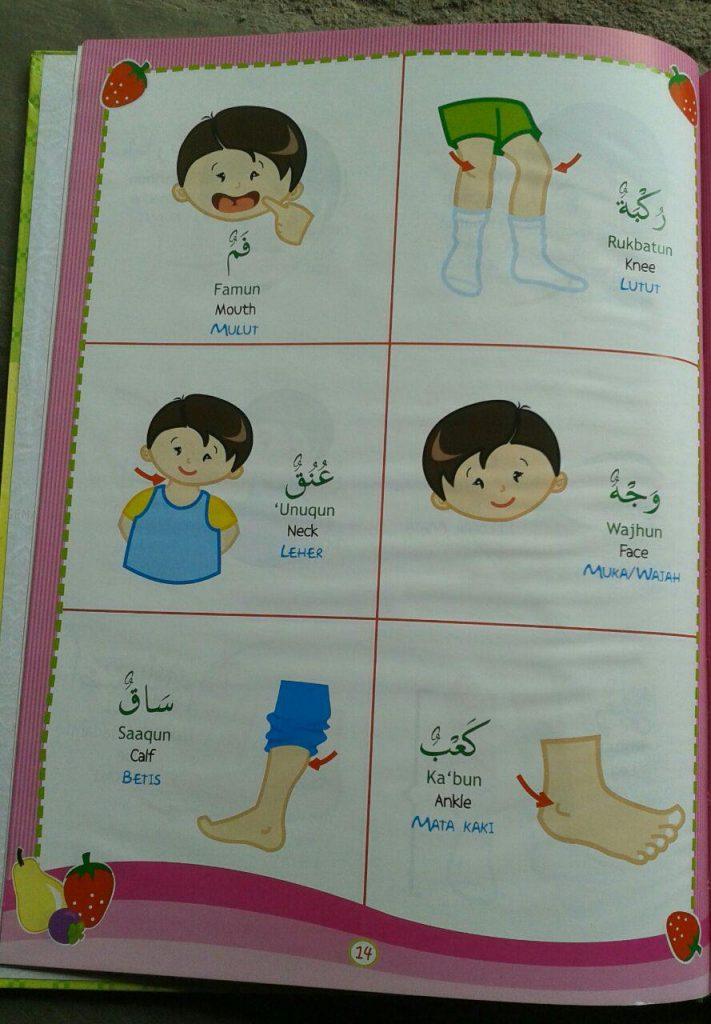 Buku Kamus Anak 3 Bahasa Arab Indonesia Inggris isi 3