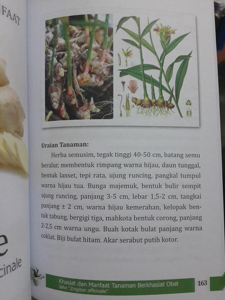 buku khasiat dan manfaat tanaman berkasiat obatbuku khasiat dan manfaat tanaman berkasiat obat isi