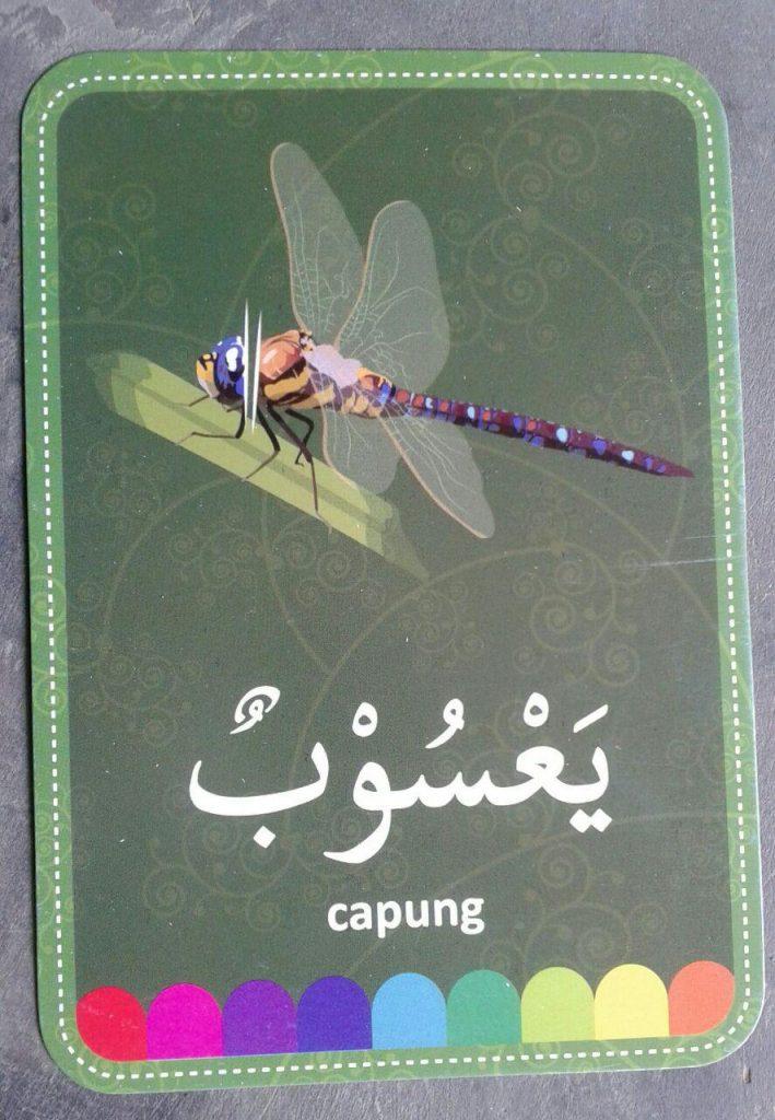 flashcard-huruf-hijaiyah-isi